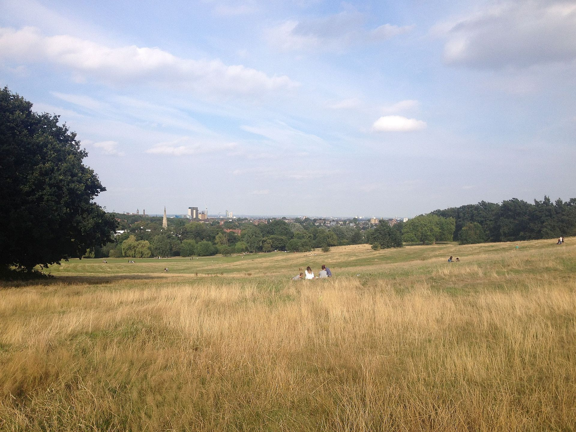 Classic view of Highgate from Hampstead Heath